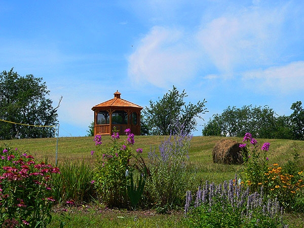 gazebo with flowers infront